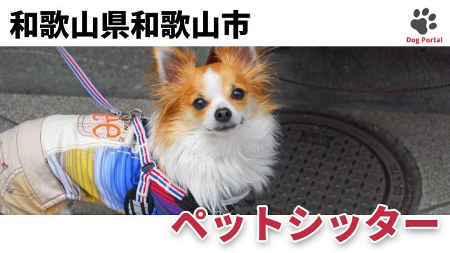 和歌山市のペットシッター