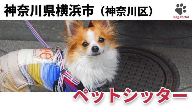 横浜市神奈川区のペットシッター
